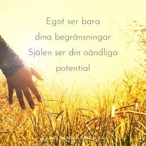 Egot ser bara dina begränsningar. Själen ser din oändliga potential.