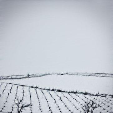 Castilla-La Mancha.