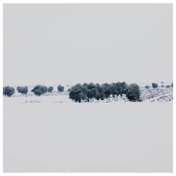 Campos nevados, España.