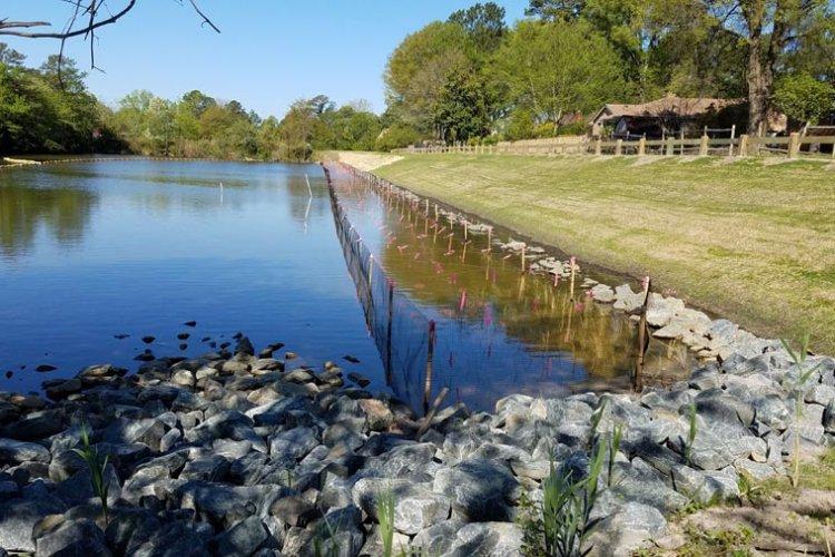 Woodstock Cove Shoreline Stabilization