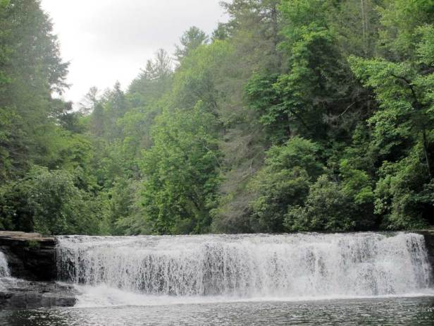 DuPont Forest, in Transylvania County, garnered a $xx million grant by the Clean Water Management Trust Fund, one of the largest single investments in the 18 westernmost counties of North Carolina. Angie Newsome/Carolina Public Press