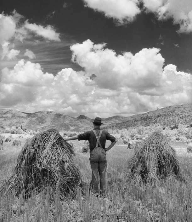 "The exhibit of Hugh Morton photographs at WCU's Mountain Heritage Center will include Morton's ""Wheat, Ashford."" Photo courtesy of Western Carolina University."