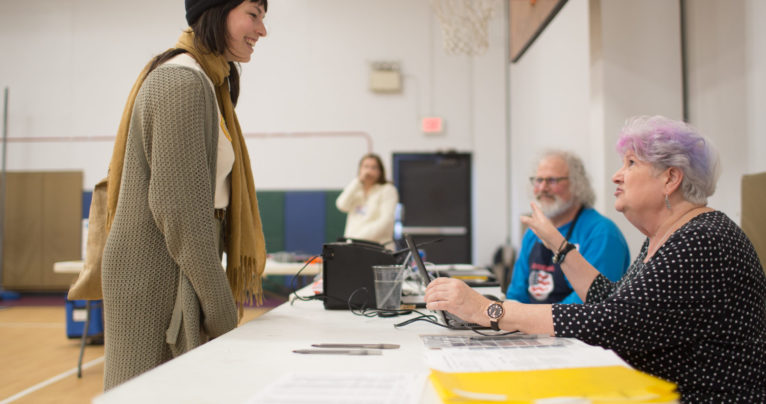 Laura Klein of Black Mountain checks in to vote in the 2020 primary election with poll worker Jan Duckworth at the Black Mountain Primary School polling place in Buncombe County on March 3, 2020. Colby Rabon / Carolina Public Press