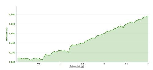 Race to the Rock 5k Elevation Chart - Chimney Rock NC
