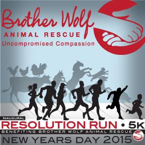 Brother Wolf Resolution Run 5k