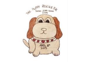 Puppy Rescue 5k April 11 2015 Concord NC