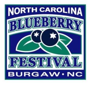 BlueberryFestival5k