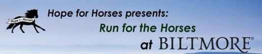 Run for the Horses 2015 Banner