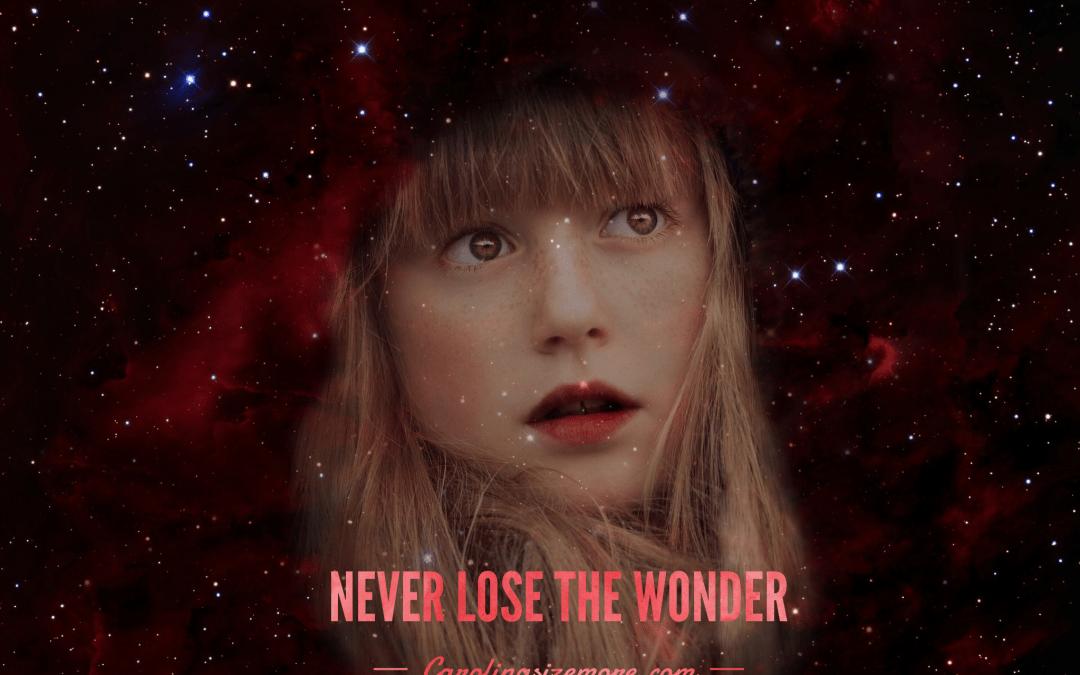 Never Lose The Wonder