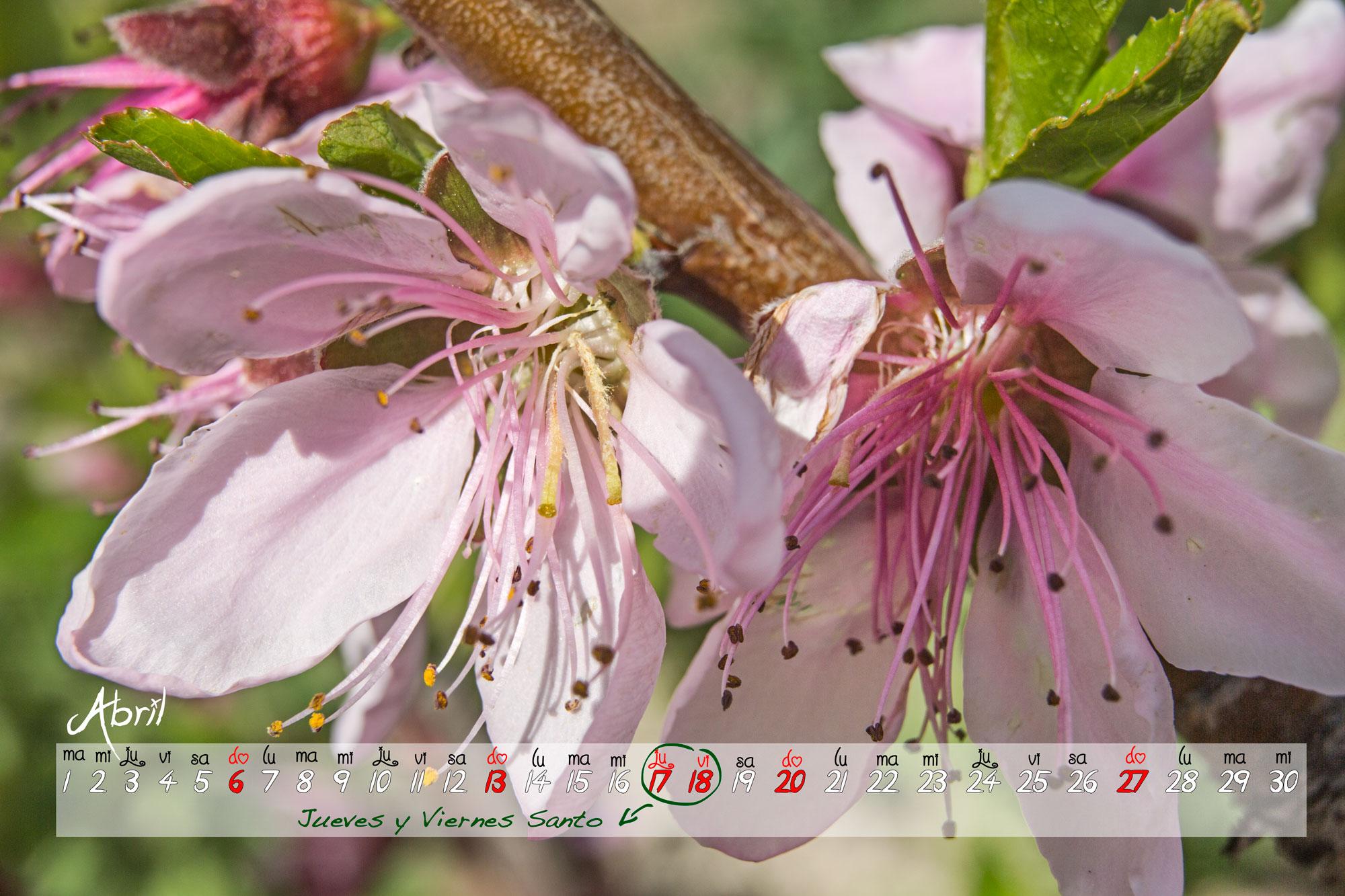 Calendario de Abril 2014