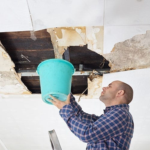 mold remediation and removal in cary raleigh and NC