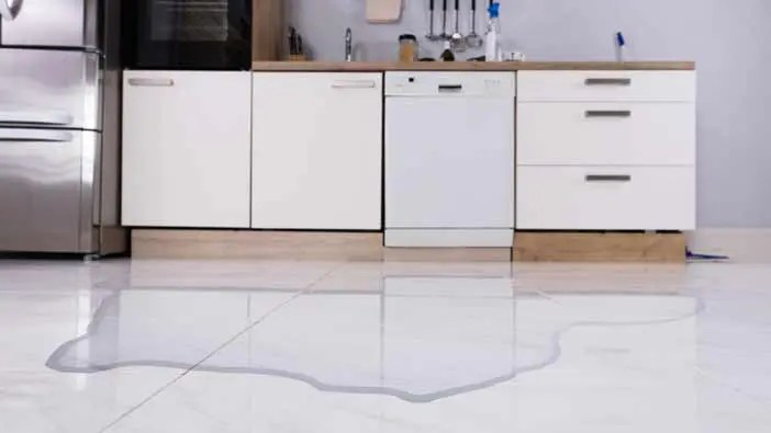 Dishwasher Repair, Damage Removal, and Cleanup in Holly Springs, NC