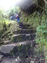 an Inca trail