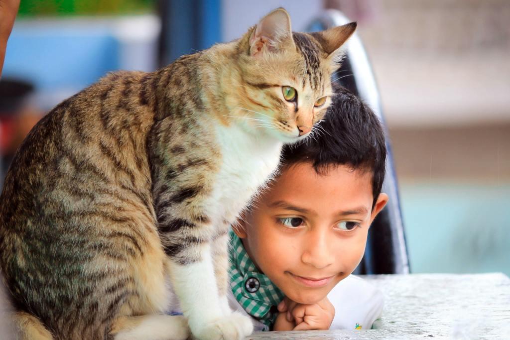 Les enfants et les animaux sont des êtres sensibles et très réceptifs aux émotions insiste Caroline Vieilleribiere psychologue à Mont de Marsan