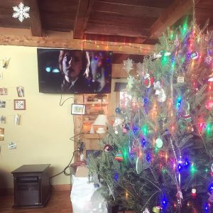 Scully is so over your shit. #xfiles #howtheghostsstolechristmas