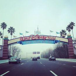 We have arrived.