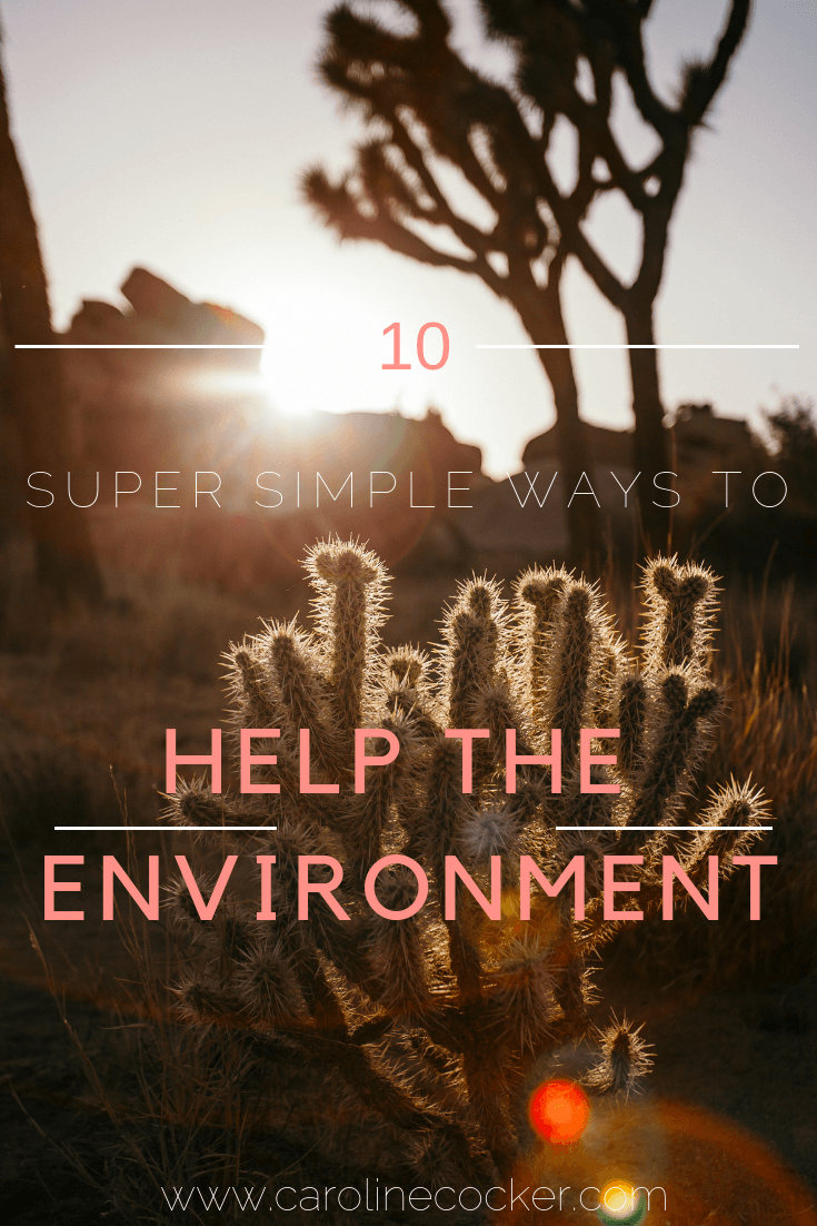 easy ways to help the environment