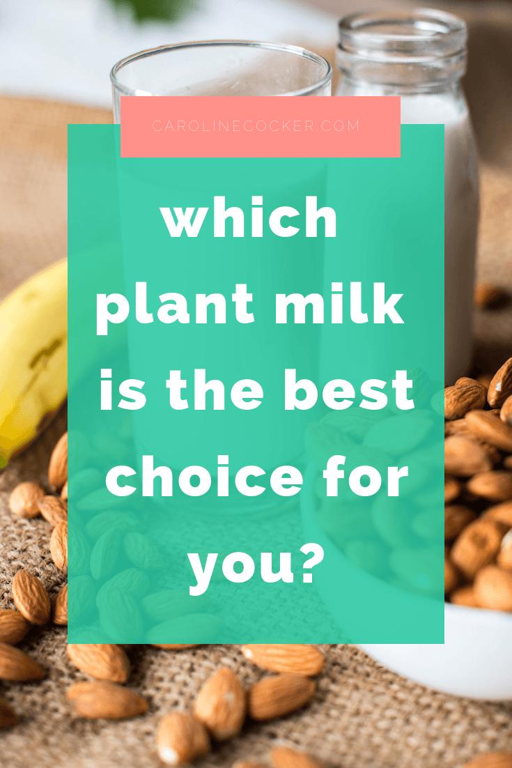 which plant milk