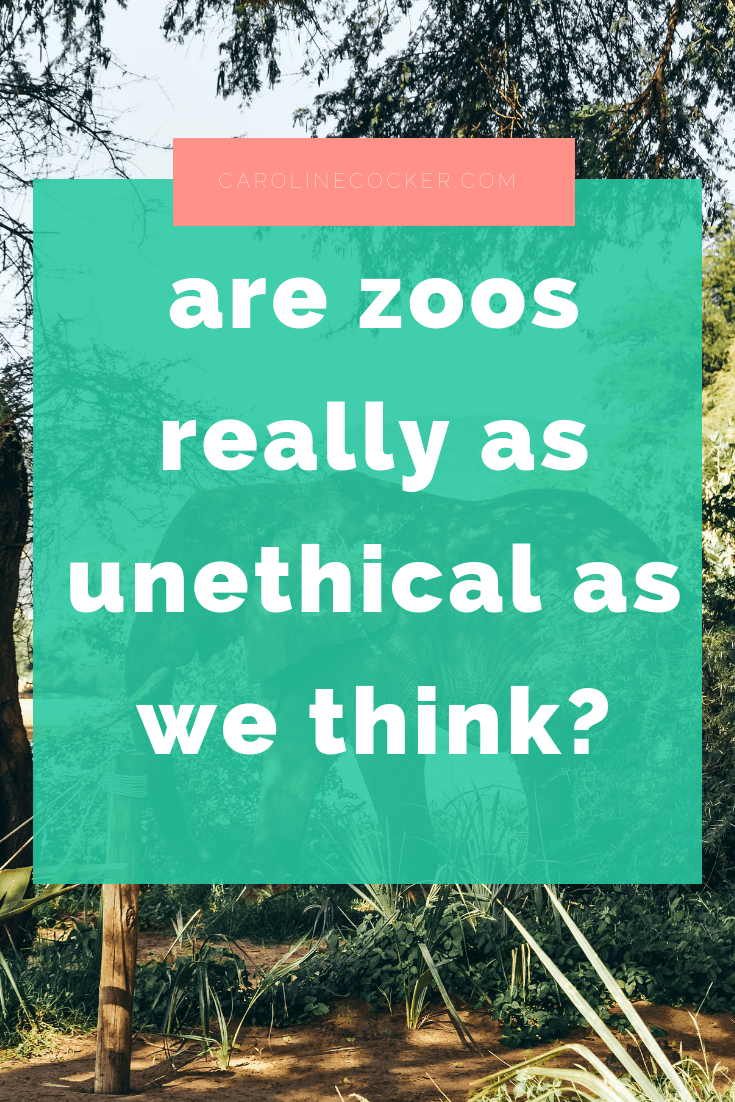 unethical zoos