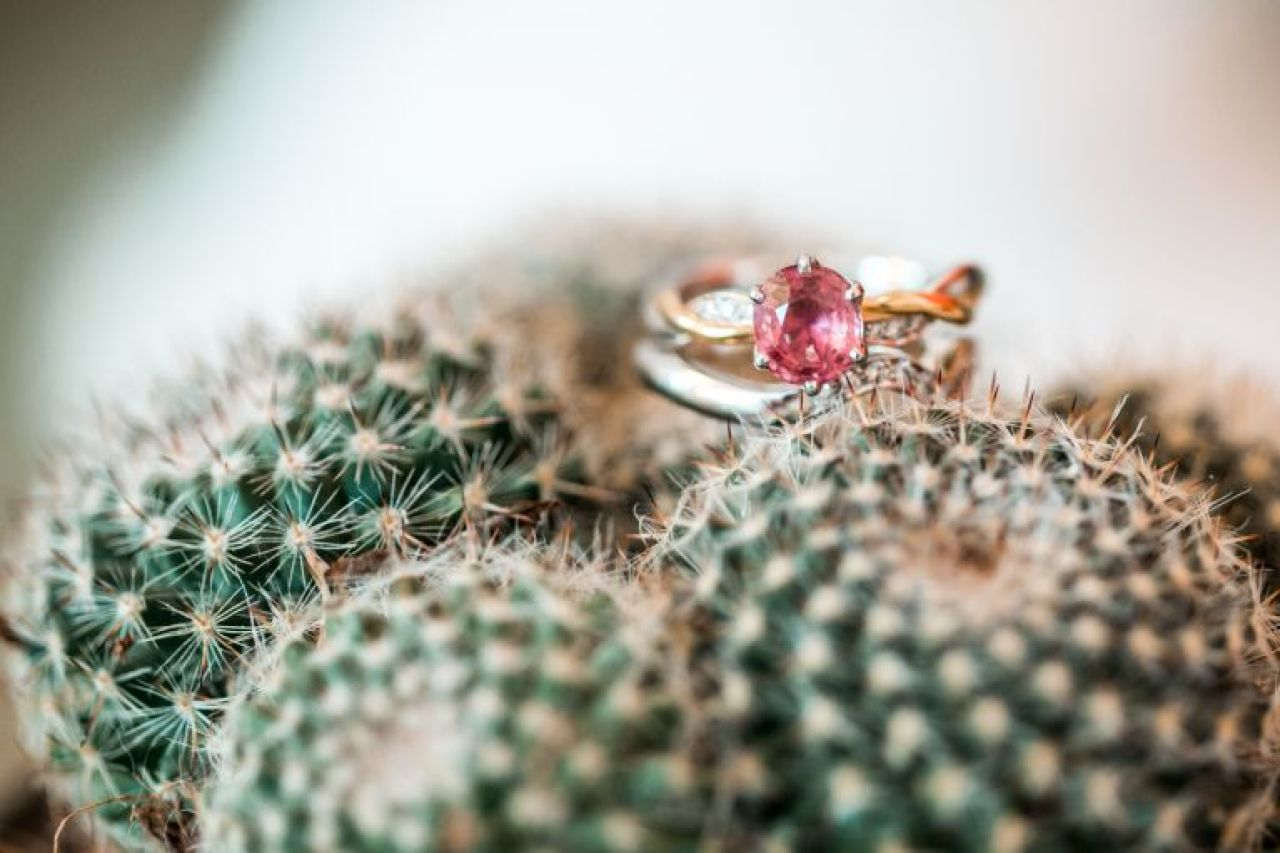 Pink engagment ring resting on a cactus