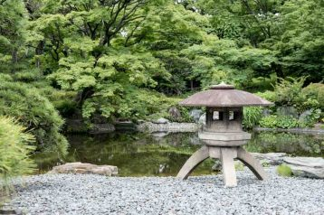 Traditional Japanese gardens with pond