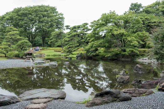 Peaceful traditional Japanese garden in Tokyo