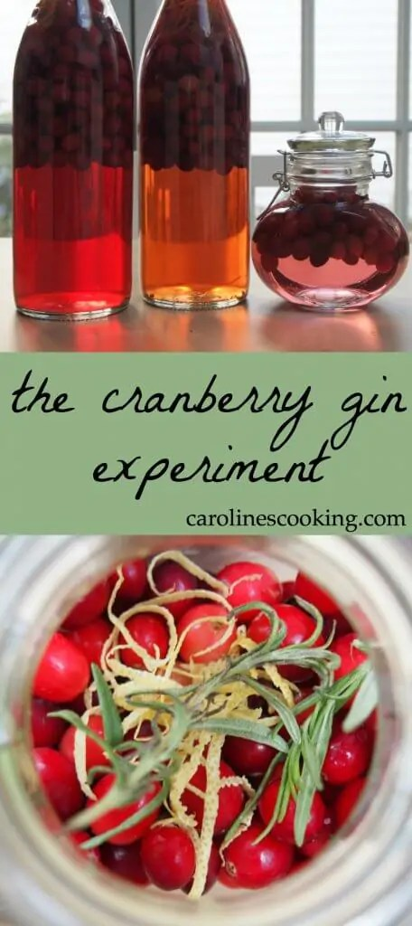 This cranberry gin is a New England take on a British classic, sloe gin, but with gin infused with cranberries and aromatics. Join the experiment to make a great drink for the holidays. See variations on how to make it and follow through to the final results with tasting notes and suggestions for using it. It makes a great Holiday gift.