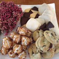 assorted petite sweets