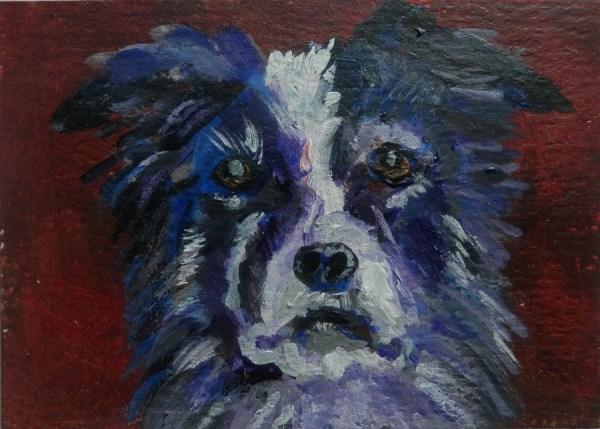 Border Collie Dog painting, border collie portrait, miniature Border Collie