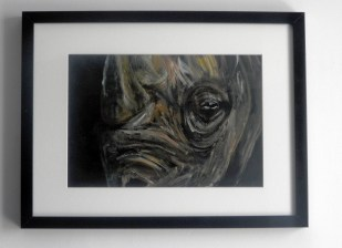 black rhino, yellow rhino, rhino painting