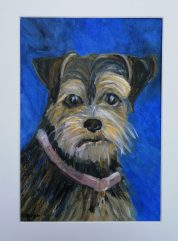yorkshire terrier pet portrait, acrylic pet painting