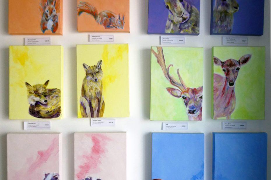 British wildlife paintings, colourful animal art, deep box canvas wildife wall art