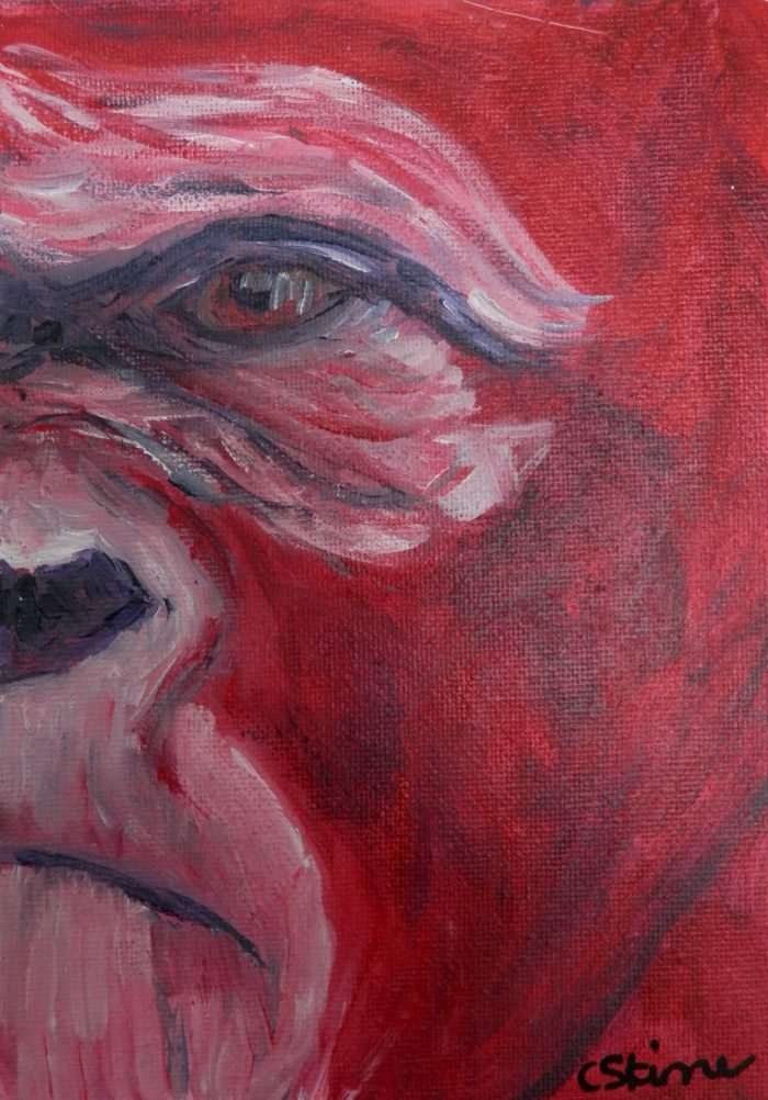 red gorilla art, red ape painting, ape artwork, African wildlife art, acrylic wildlife art