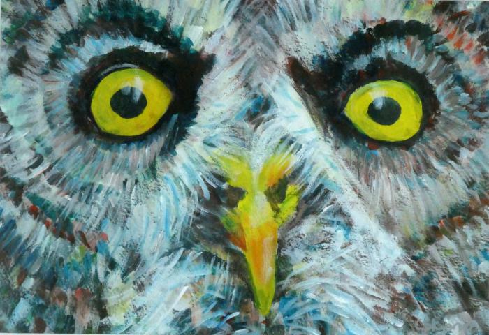 Great Grey owl placemat, owl mug, owl coaster, owl homewares, yellow eyes