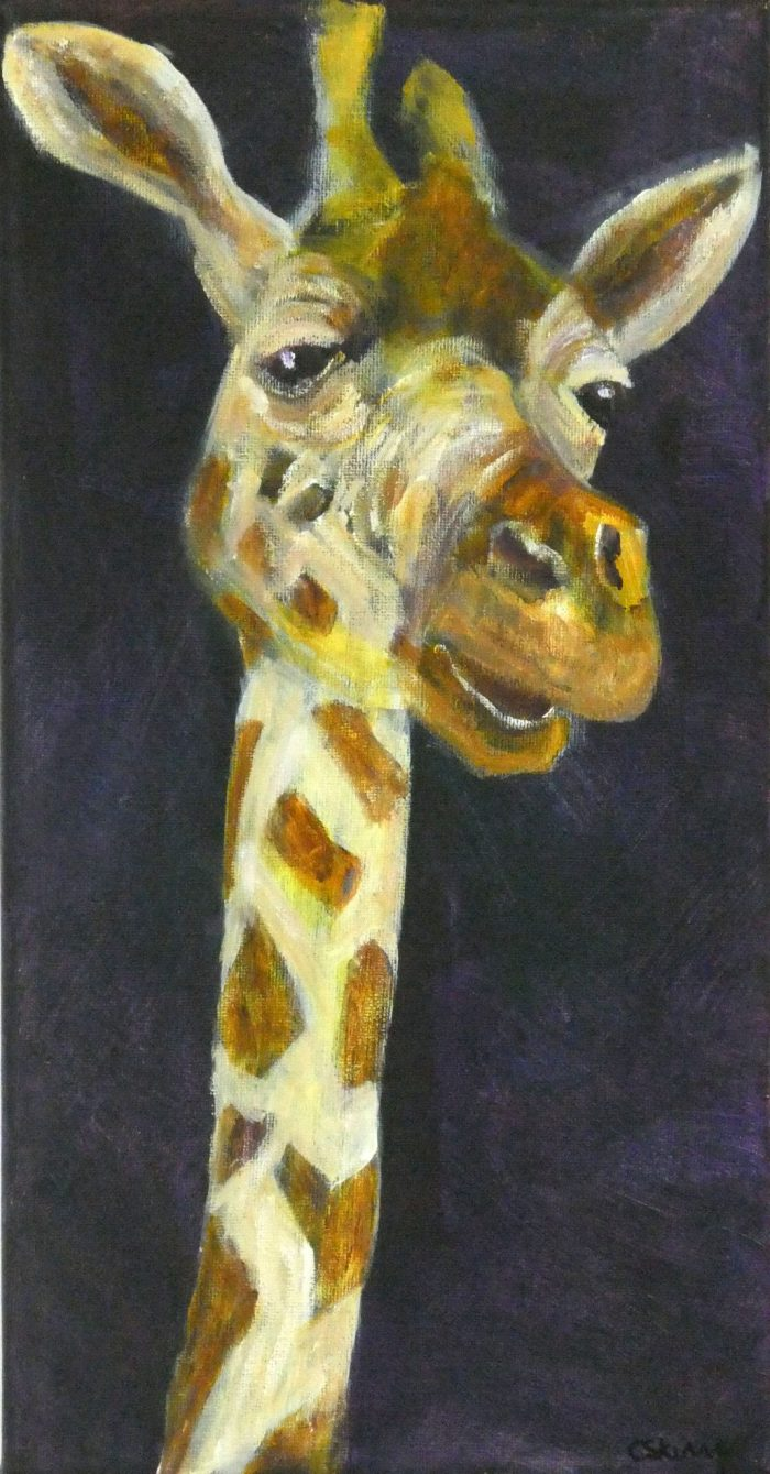 Colourful giraffe art canvas