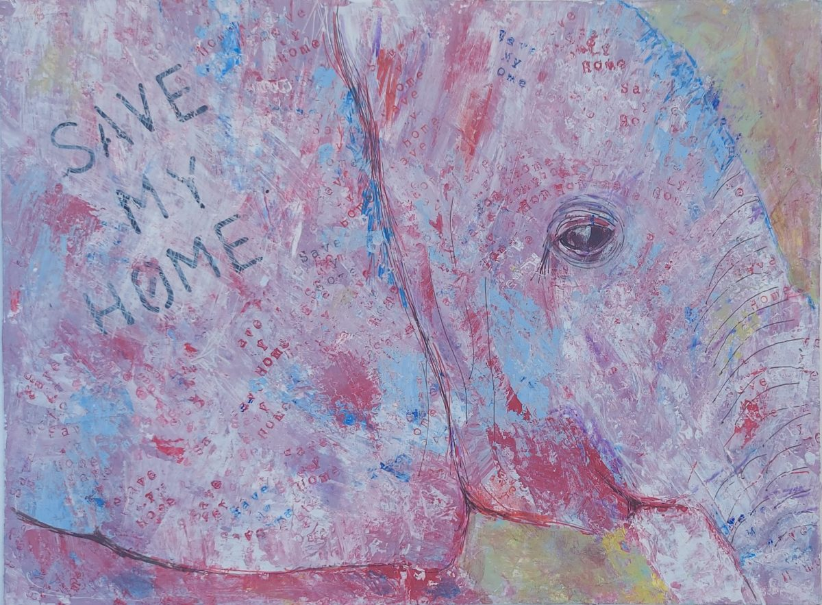 Colourful elephant painting campaigning to save our home