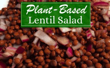 Plant Based Lentil Salad