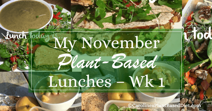 my-plant-based-lunches-wk1-november-2016