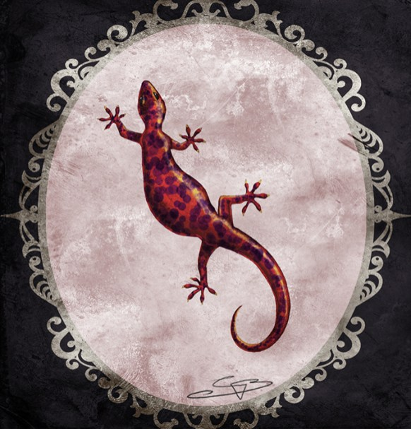Discworld tissue box cover - Salamander