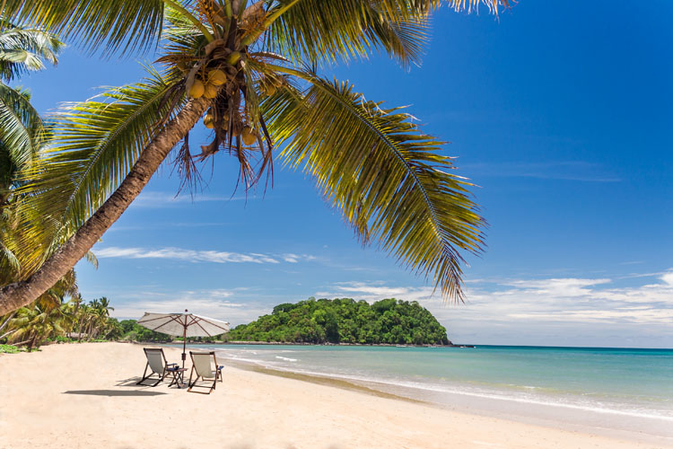 Beautiful tropical sandy beach with palm trees and loungers Virgin Islands