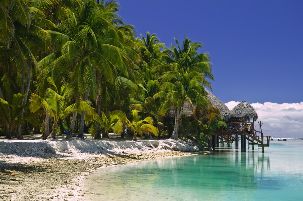 Tropical Dream Beach Paradise of the South Pacific with Over water Bungalows on a resort island