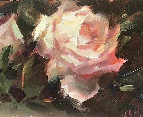 muse-rose