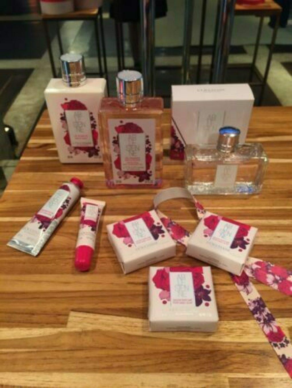L'Occitane en Provence apresenta kits para o Natal