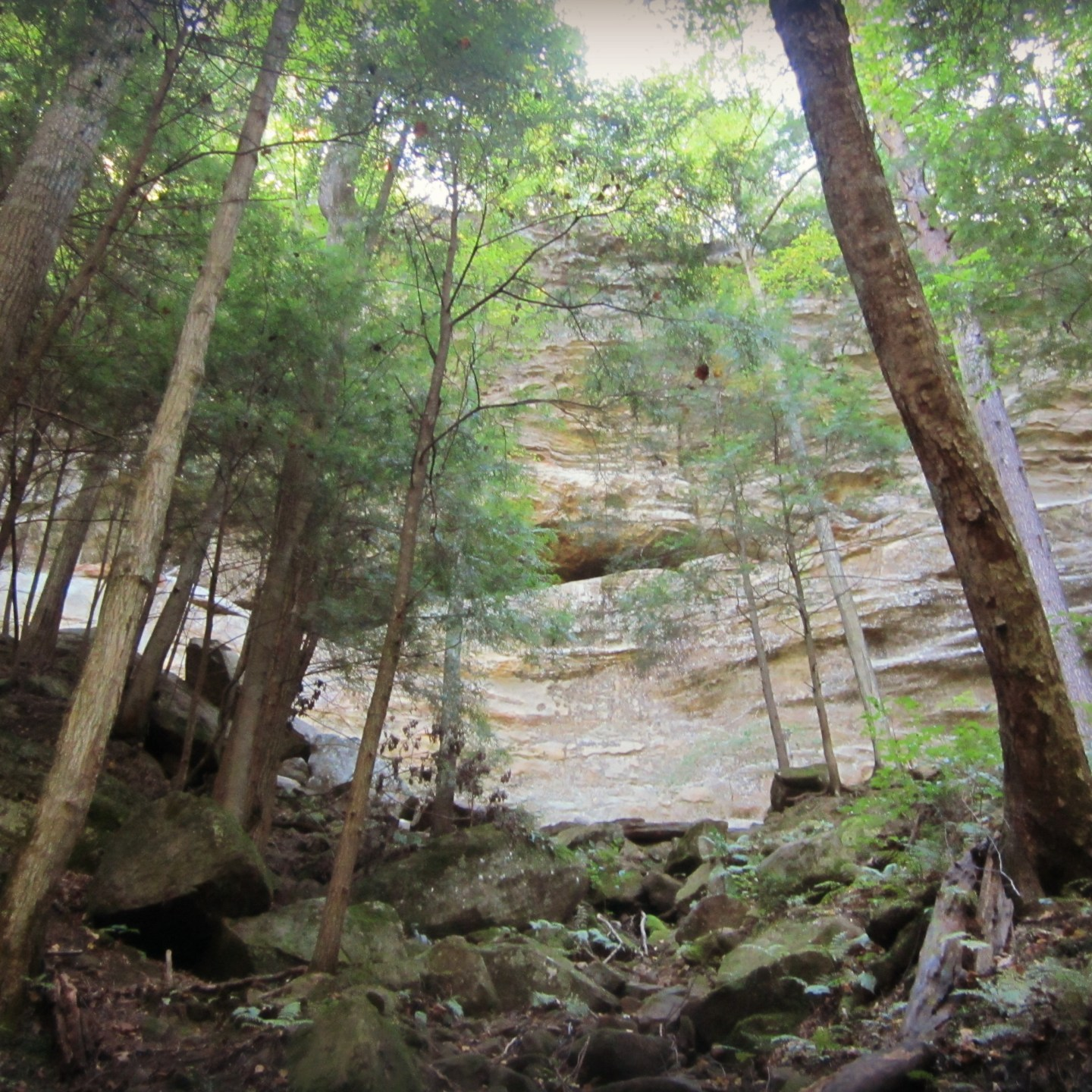 Wordless Wednesday: Hocking Hills