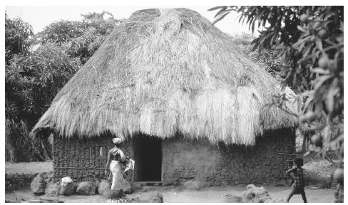 A thatched hut in a village on the south coast of Sierra Leone.