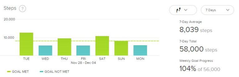 Fitbit Week