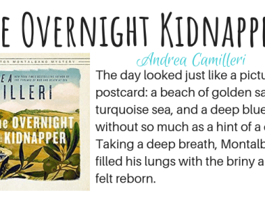 The Overnight Kidnapper by Andrea Camilleri