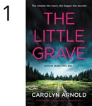 The Little Grave by Carolyn Arnold, a dark stormy sky over a clearing in the woods with a dirt two rut laneway