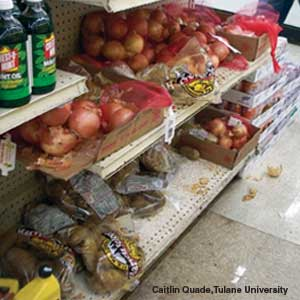 Food Deserts And Public Health