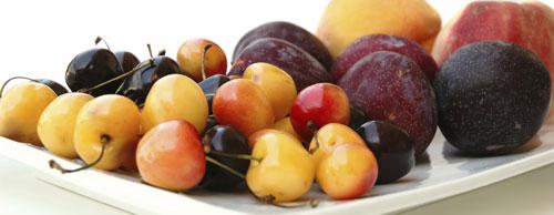 plateful of summer fruits cherries plums peaches